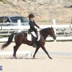 Bermuda Dressage Show Oct 13 2019 (5)