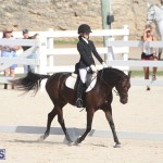 Bermuda Dressage Show Oct 13 2019 (6)