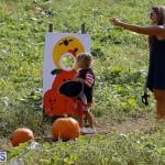 J&J Produce Pick Your Own Pumpkin Bermuda October 11 2019 (15)