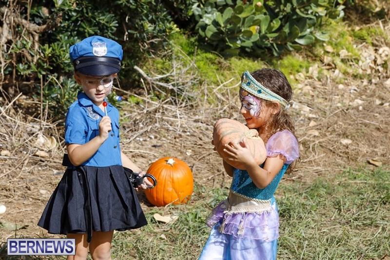 JJ-Produce-Pick-Your-Own-Pumpkin-Bermuda-October-11-2019-23