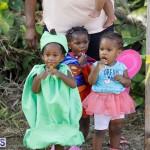 J&J Produce Pick Your Own Pumpkin Bermuda October 11 2019 (55)