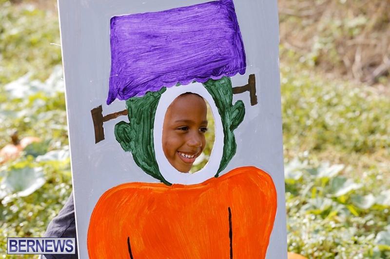 JJ-Produce-Pick-Your-Own-Pumpkin-Bermuda-October-11-2019-59