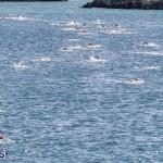 Round the Sound Swim Bermuda, October 13 2019-6000