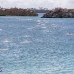 Round the Sound Swim Bermuda, October 13 2019-6001