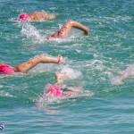 Round the Sound Swim Bermuda, October 13 2019-6004
