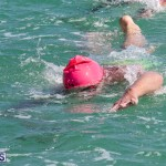 Round the Sound Swim Bermuda, October 13 2019-6007