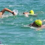 Round the Sound Swim Bermuda, October 13 2019-6008