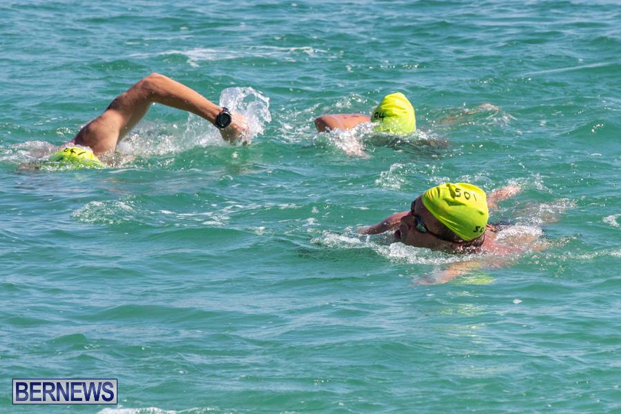 Round-the-Sound-Swim-Bermuda-October-13-2019-6008