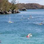 Round the Sound Swim Bermuda, October 13 2019-6010