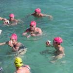 Round the Sound Swim Bermuda, October 13 2019-6011