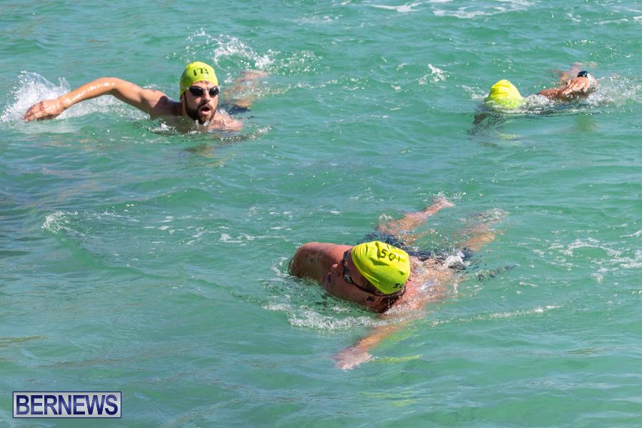 Round-the-Sound-Swim-Bermuda-October-13-2019-6013