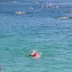 Round the Sound Swim Bermuda, October 13 2019-6014