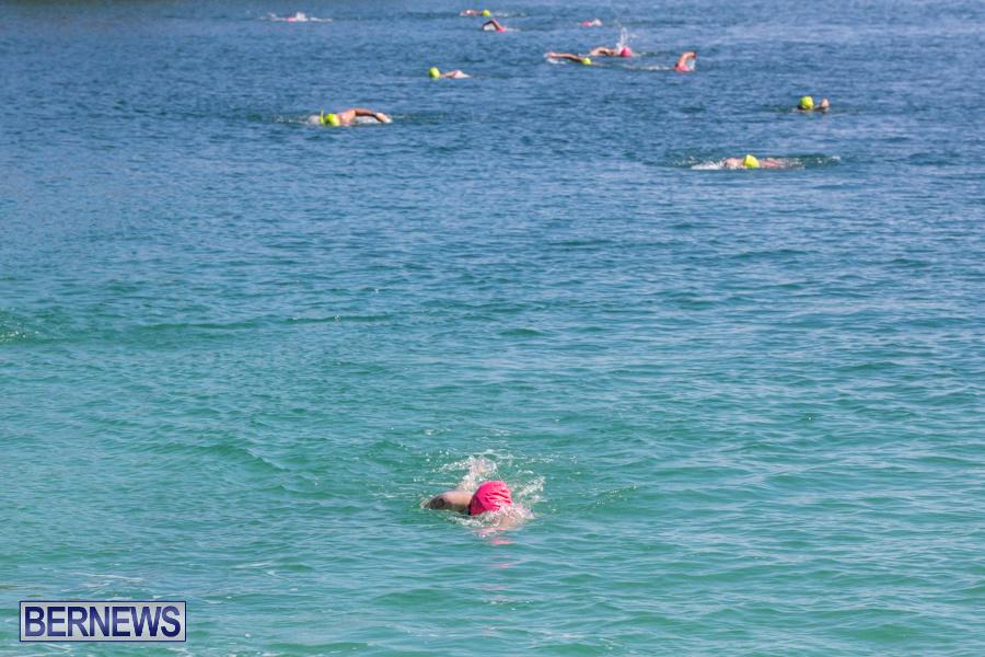 Round-the-Sound-Swim-Bermuda-October-13-2019-6014