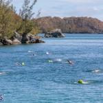 Round the Sound Swim Bermuda, October 13 2019-6015