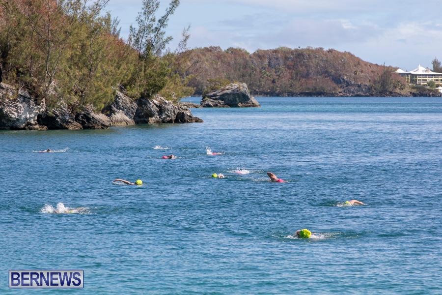 Round-the-Sound-Swim-Bermuda-October-13-2019-6015