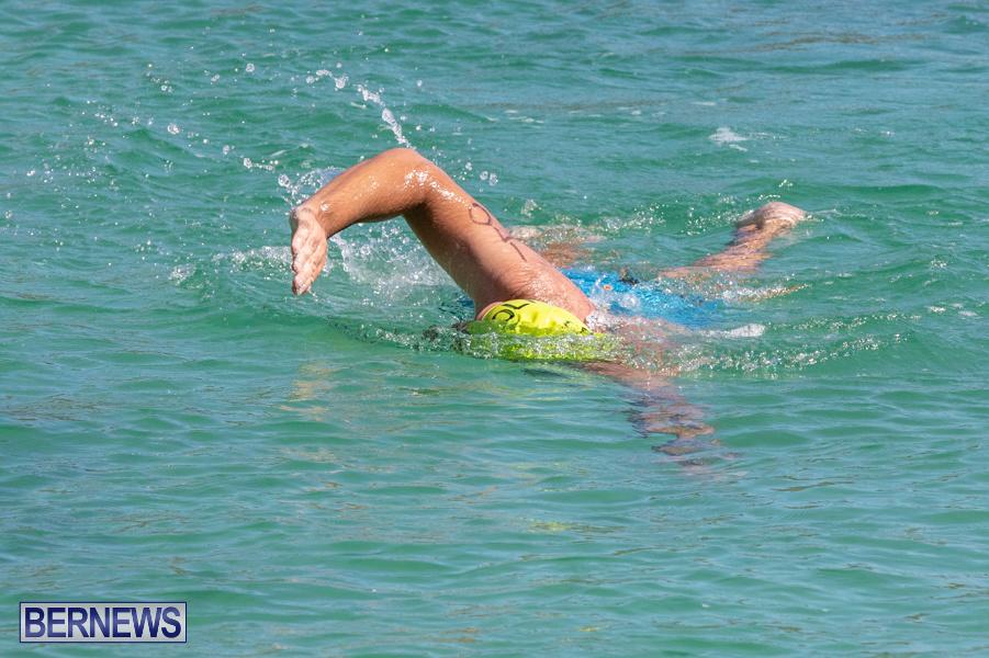 Round-the-Sound-Swim-Bermuda-October-13-2019-6017