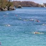 Round the Sound Swim Bermuda, October 13 2019-6019