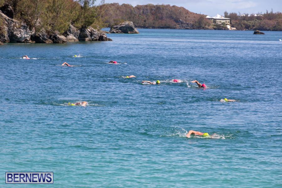 Round-the-Sound-Swim-Bermuda-October-13-2019-6019