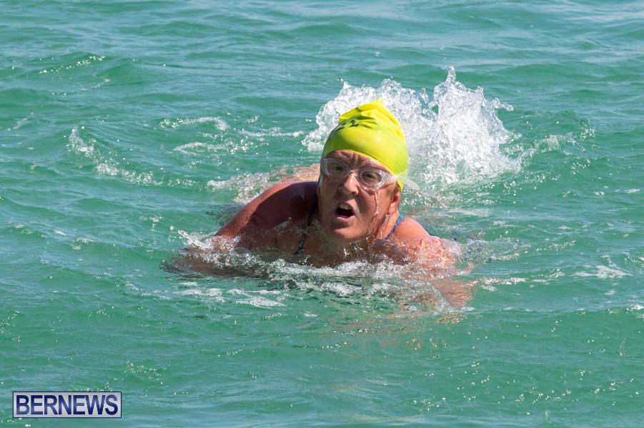 Round-the-Sound-Swim-Bermuda-October-13-2019-6028