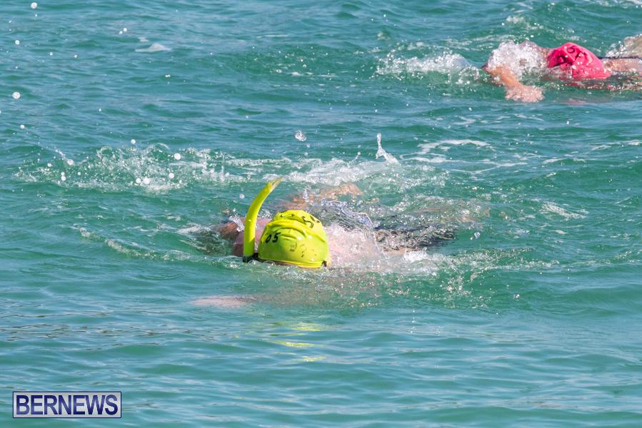 Round-the-Sound-Swim-Bermuda-October-13-2019-6035
