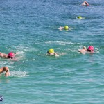 Round the Sound Swim Bermuda, October 13 2019-6037