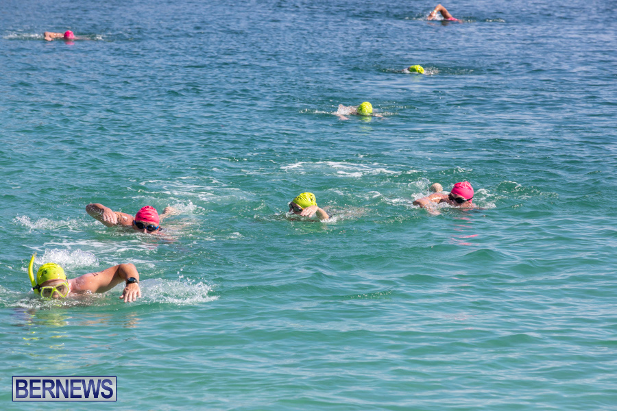 Round-the-Sound-Swim-Bermuda-October-13-2019-6037