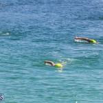 Round the Sound Swim Bermuda, October 13 2019-6040