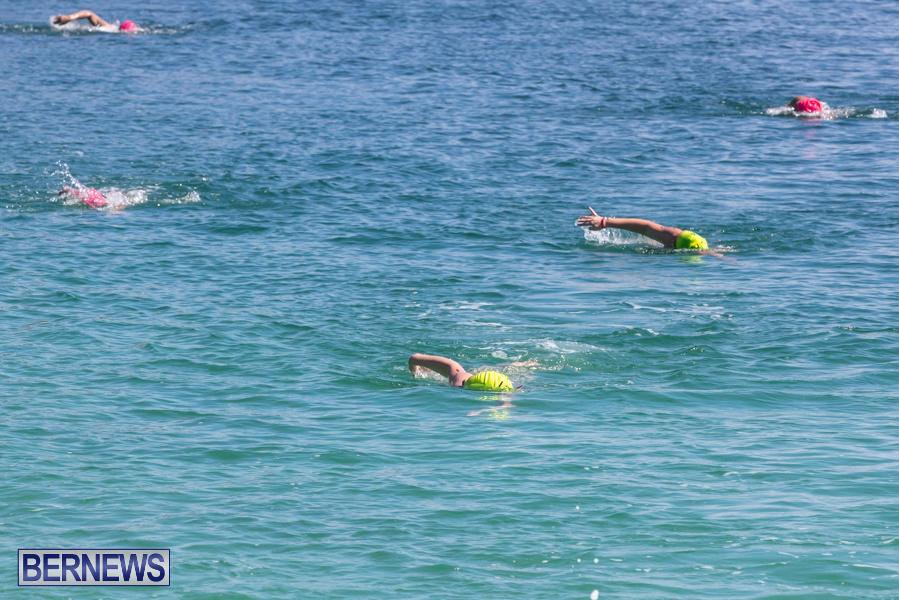Round-the-Sound-Swim-Bermuda-October-13-2019-6040