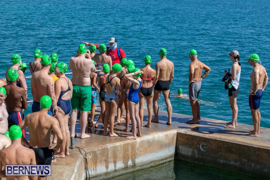 Round-the-Sound-Swim-Bermuda-October-13-2019-6043