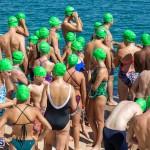 Round the Sound Swim Bermuda, October 13 2019-6044