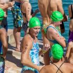 Round the Sound Swim Bermuda, October 13 2019-6045