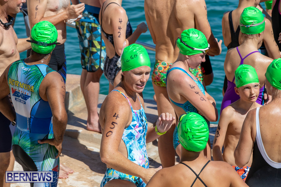 Round-the-Sound-Swim-Bermuda-October-13-2019-6045