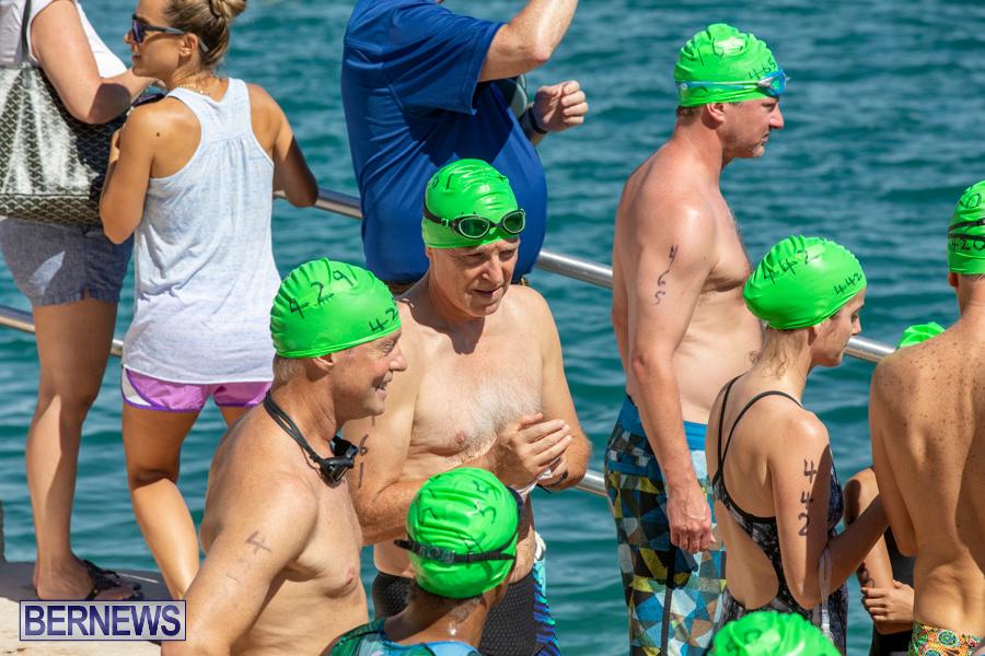 Round-the-Sound-Swim-Bermuda-October-13-2019-6046