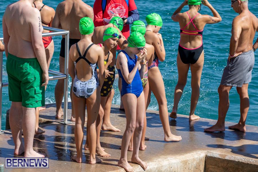 Round-the-Sound-Swim-Bermuda-October-13-2019-6049