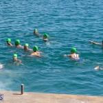 Round the Sound Swim Bermuda, October 13 2019-6052