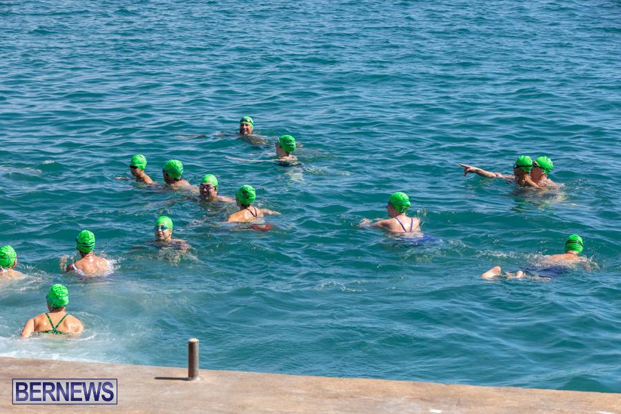 Round-the-Sound-Swim-Bermuda-October-13-2019-6052