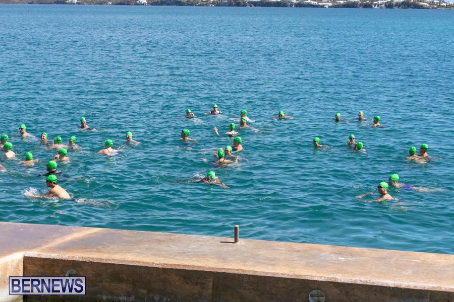 Round-the-Sound-Swim-Bermuda-October-13-2019-6053
