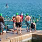 Round the Sound Swim Bermuda, October 13 2019-6055