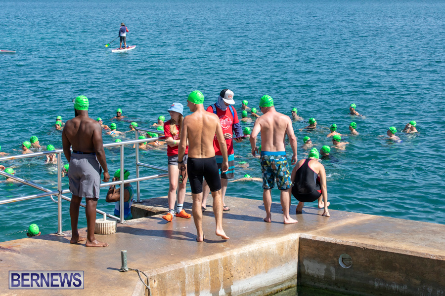 Round-the-Sound-Swim-Bermuda-October-13-2019-6055