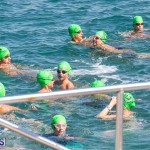Round the Sound Swim Bermuda, October 13 2019-6058