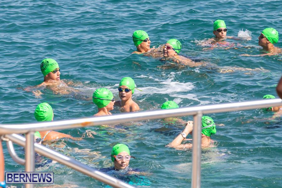 Round-the-Sound-Swim-Bermuda-October-13-2019-6058