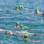 Round the Sound Swim Bermuda, October 13 2019-6063