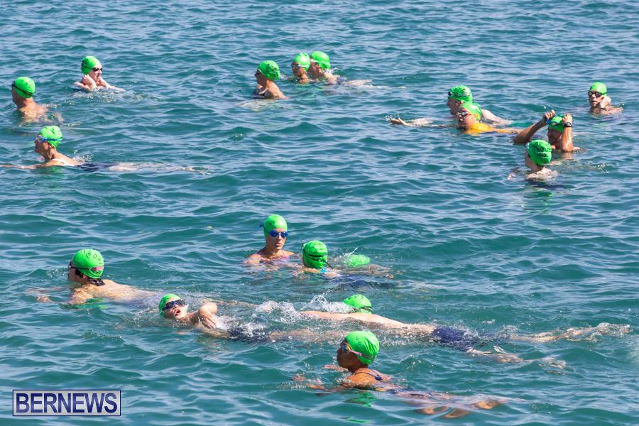 Round-the-Sound-Swim-Bermuda-October-13-2019-6063