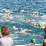 Round the Sound Swim Bermuda, October 13 2019-6065