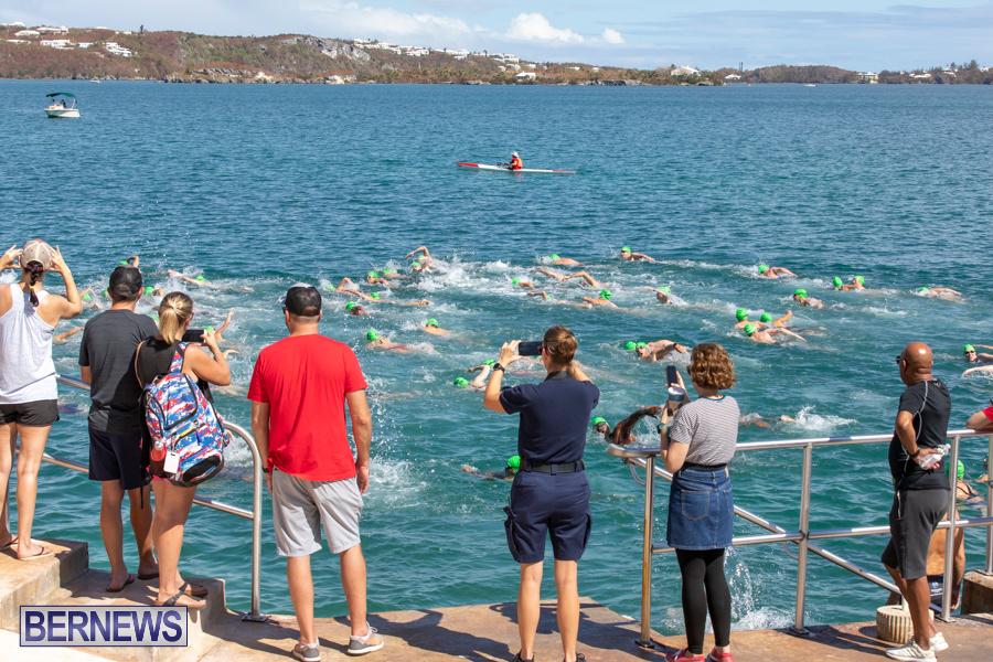 Round-the-Sound-Swim-Bermuda-October-13-2019-6068