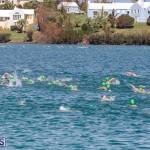 Round the Sound Swim Bermuda, October 13 2019-6072