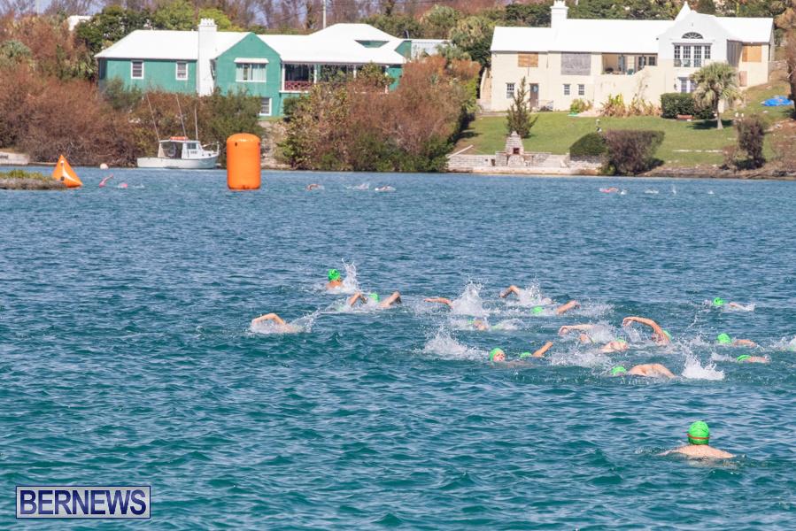 Round-the-Sound-Swim-Bermuda-October-13-2019-6073