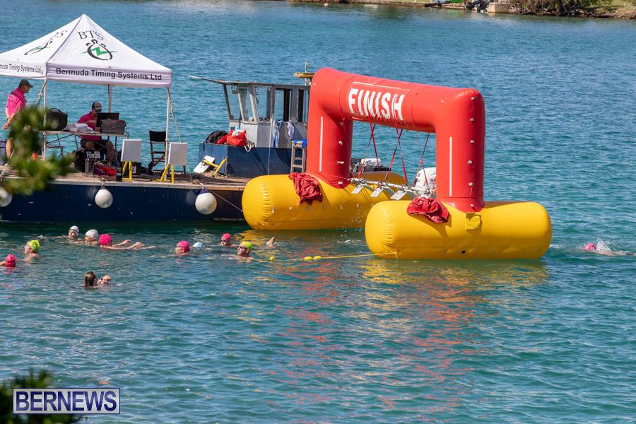 Round-the-Sound-Swim-Bermuda-October-13-2019-6074