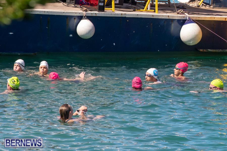 Round-the-Sound-Swim-Bermuda-October-13-2019-6075