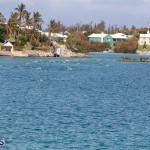 Round the Sound Swim Bermuda, October 13 2019-6078